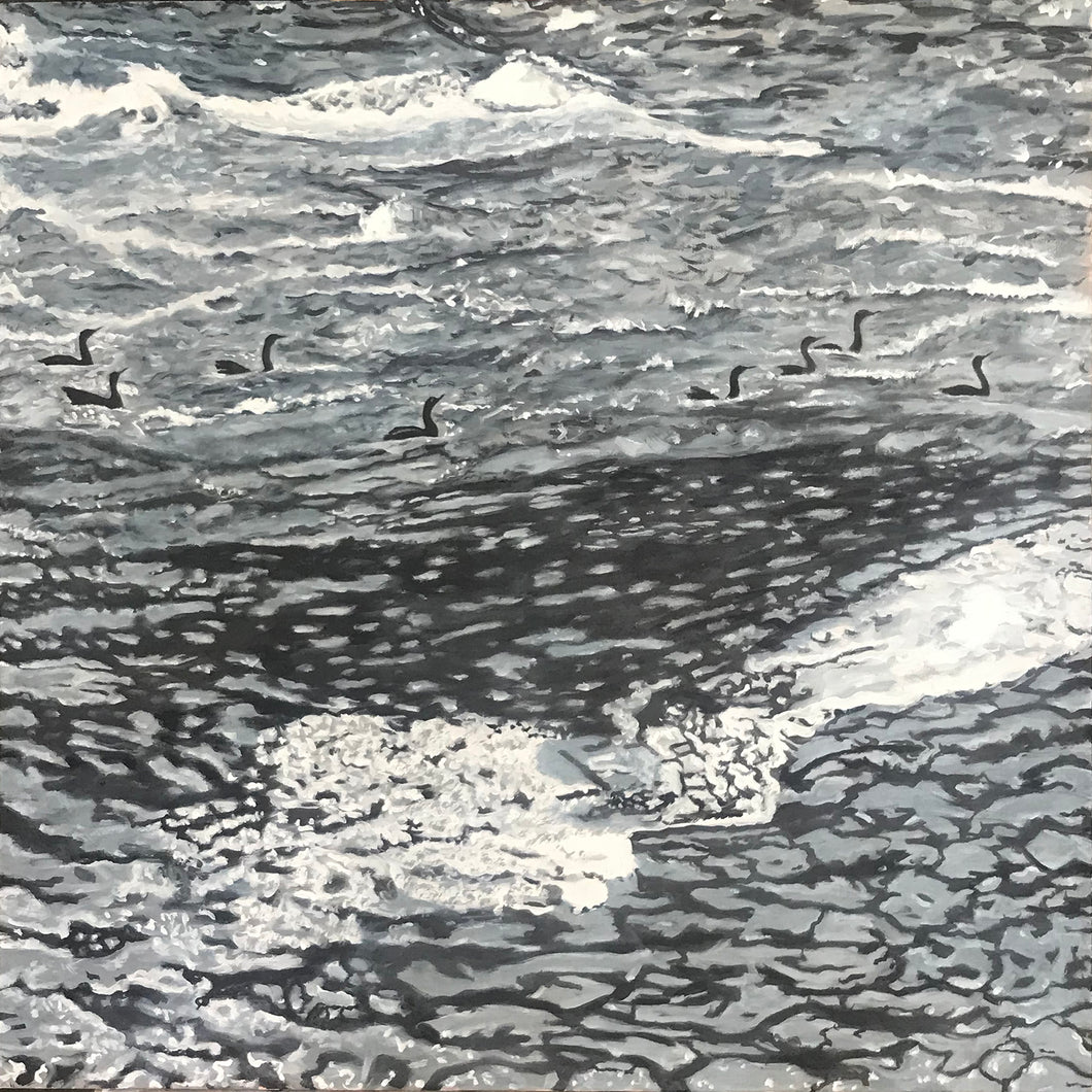 Cormorants - Biddeford Falls Maine.....oil on canvas - 24