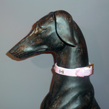 Bone Charm Collar - Howling Dog Alaska