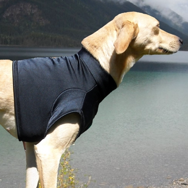 Field Chest Protector - Howling Dog Alaska