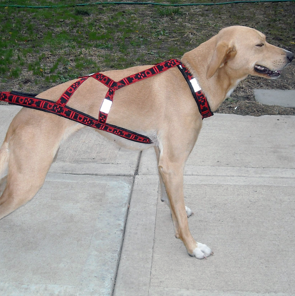 Hound Harness - Howling Dog Alaska