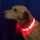 Howling Dog Alaska LED Collar