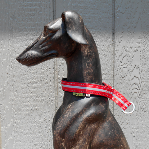 Padded Collar - Howling Dog Alaska
