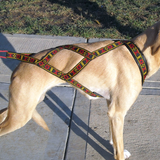 Standard Harness - Howling Dog Alaska