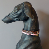 Two Tone Collar - Howling Dog Alaska