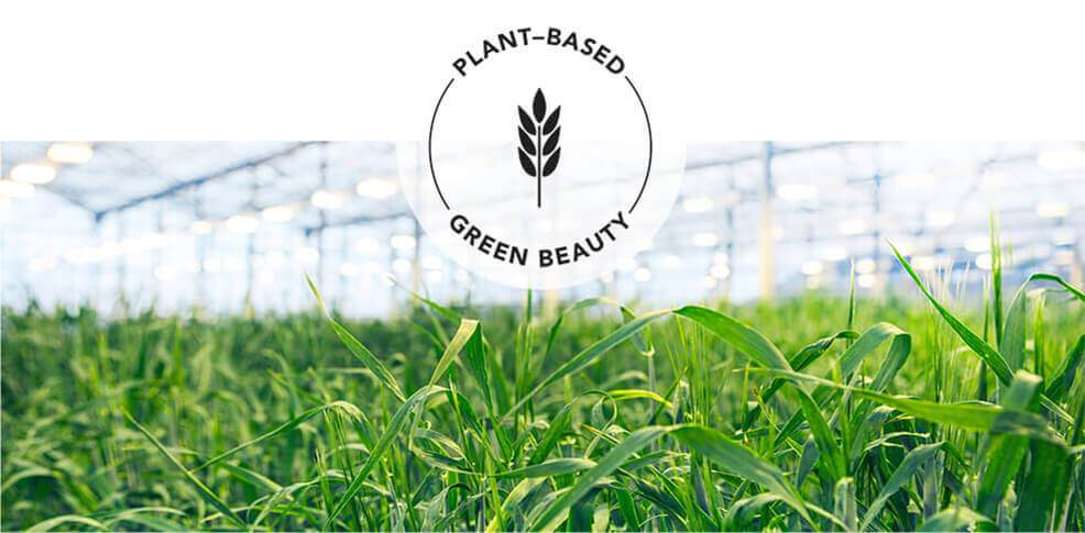 Plant-based – Green beauty