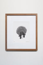 Load image into Gallery viewer, Echidna Print