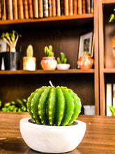 Laad de afbeelding in de galerijviewer, Cactus Candles - Avalon - Gifts, Antiques & Plants