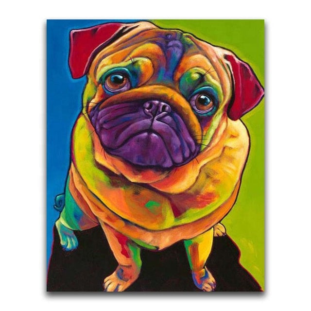 Colourful Pug 2