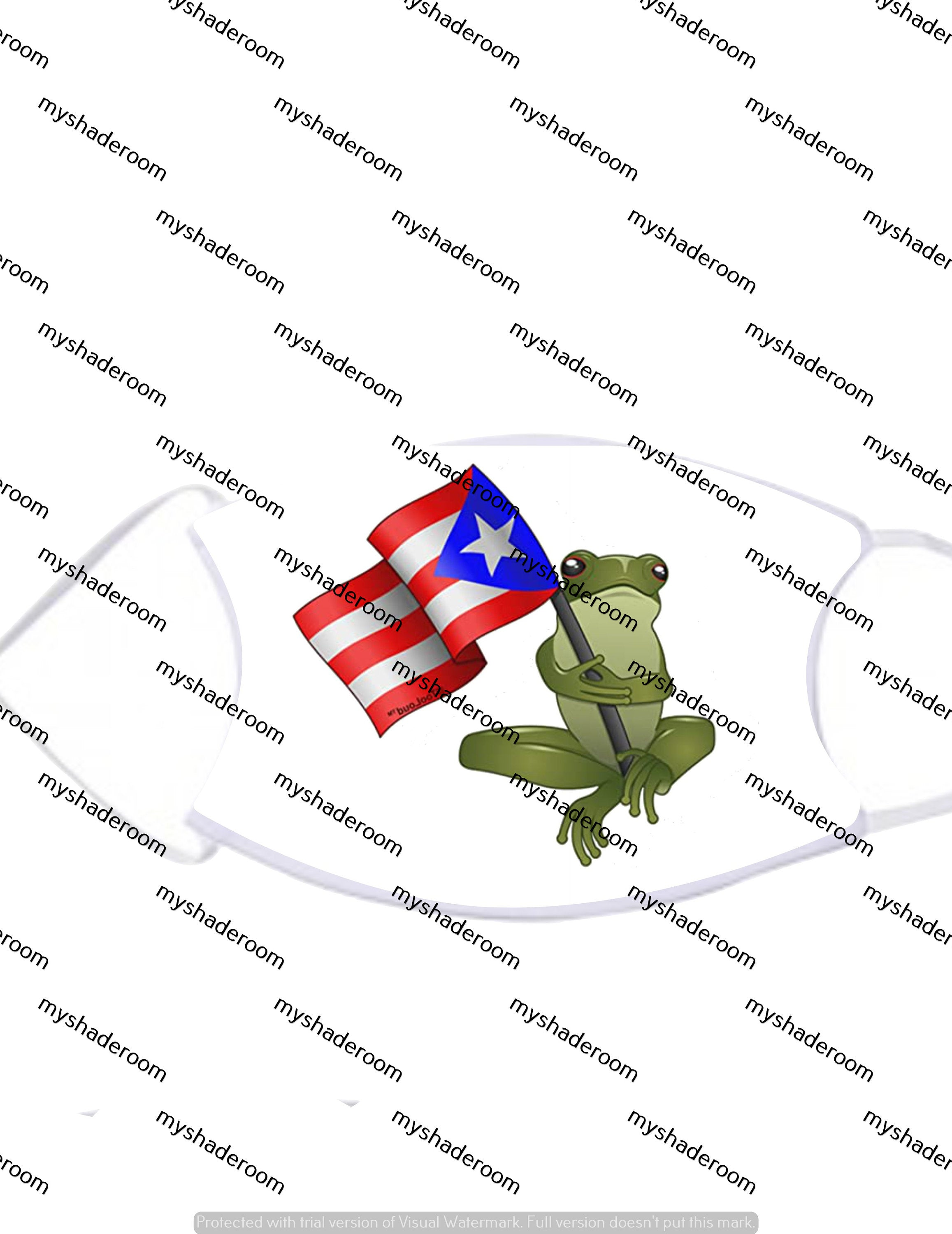 PR Frog Holding Flag Mask Face Covering Adjustable with Two Filters