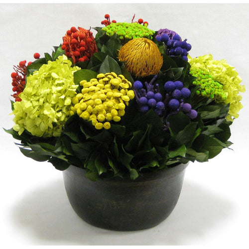 Small Wooden Round Container Antique Black - Multicolor w/ Banksia, Brunia, Pharalis & Hydrangea Basil