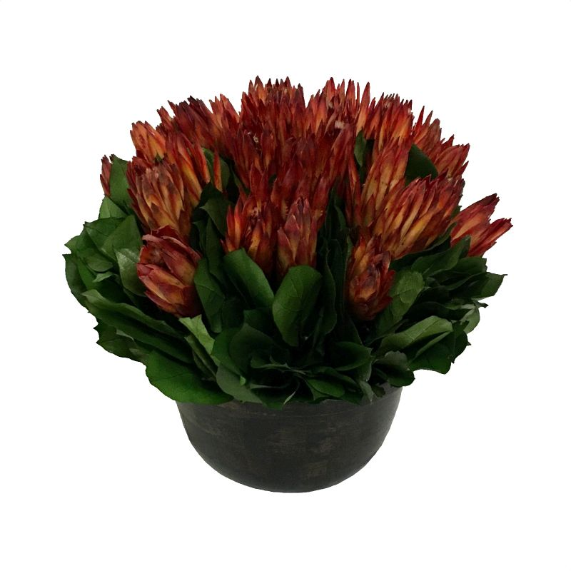 Small Wooden Round Container Antique Black - Protea Red