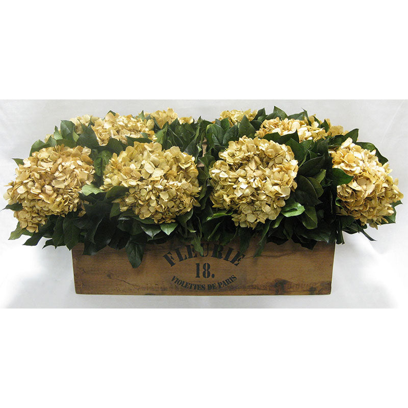 Wooden Basket w/Handle - Hydrangea Ivory