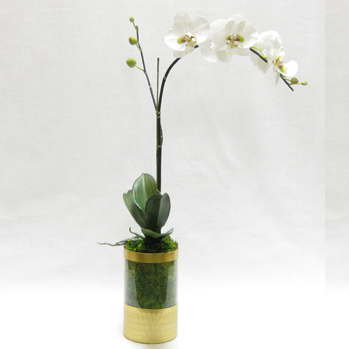 Cylinder Glass Vase Gold - White & Green Orchid Artificial