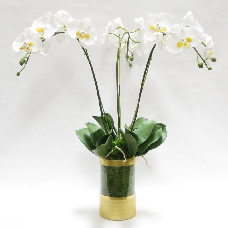Cylinder Glass Vase Gold - White & Yellow Orchid Artificial - 3 Stems