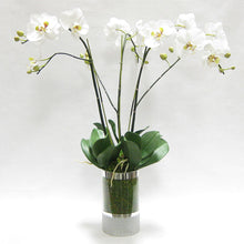 Load image into Gallery viewer, Cylinder Glass Vase Silver - White & Green Orchid Artificial - 3 Stems