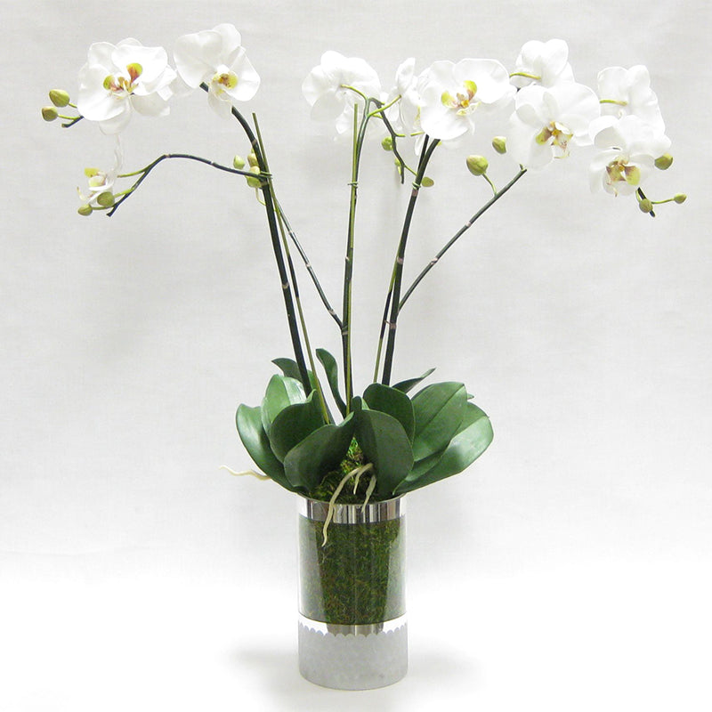 Cylinder Glass Vase Silver - White & Green Orchid Artificial - 3 Stems
