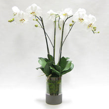 Load image into Gallery viewer, Cylinder Glass Vase Smoke - White & Green Orchid Artificial - 3 Stems