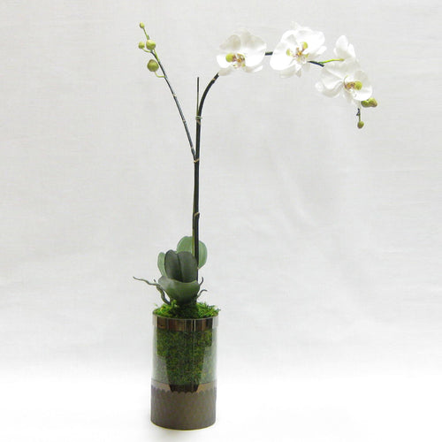 Cylinder Glass Vase Smoke - White & Green Orchid Artificial