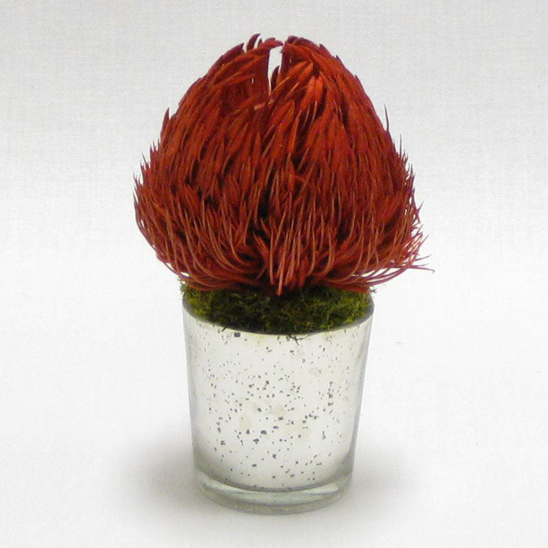 Mercury Glass Votive - Banksia Red
