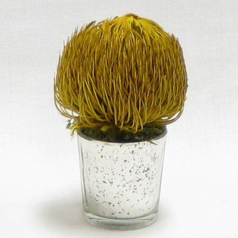 Mercury Glass Votive - Banksia Yellow