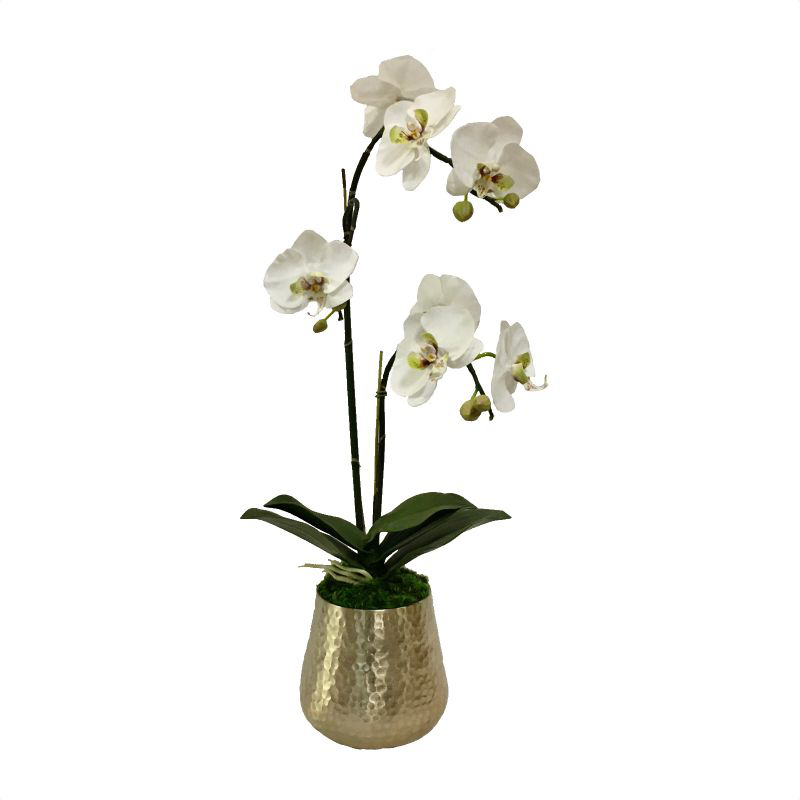 Gold Metal Hammered Vase Large - White & Green Double Orchid Artificial