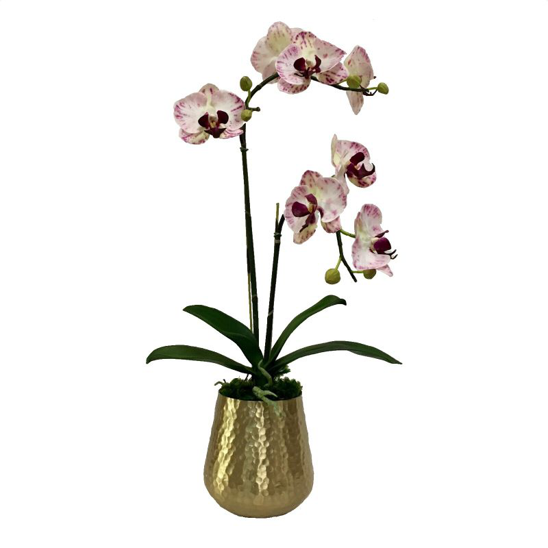 Gold Metal Hammered Vase Large - White & Purple Double Orchid Artificial