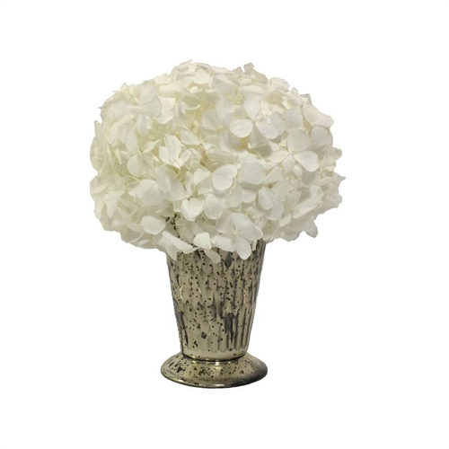Glass Julep Cup Hammered - Hydrangea White