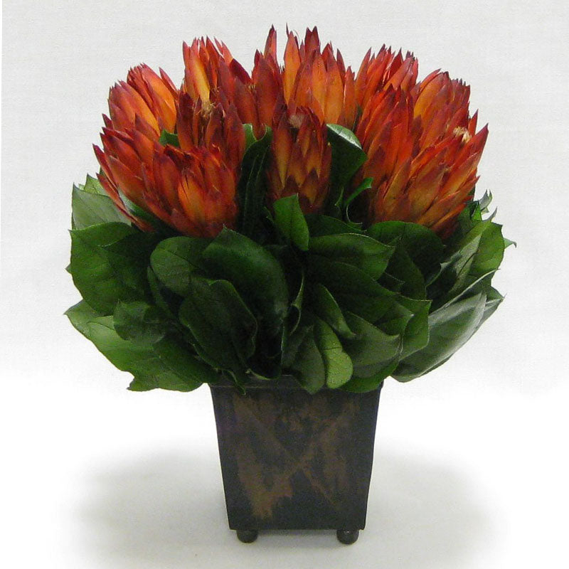 Copper Square Mini Container - Protea