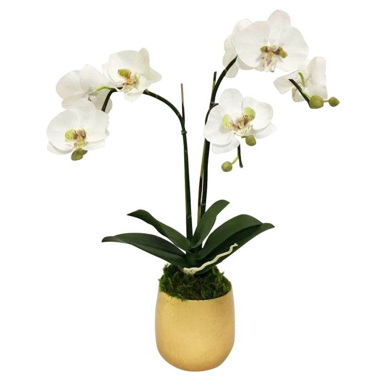 Resin Round Container Small Gold Leaf - Double Orchid Green & White Artificial