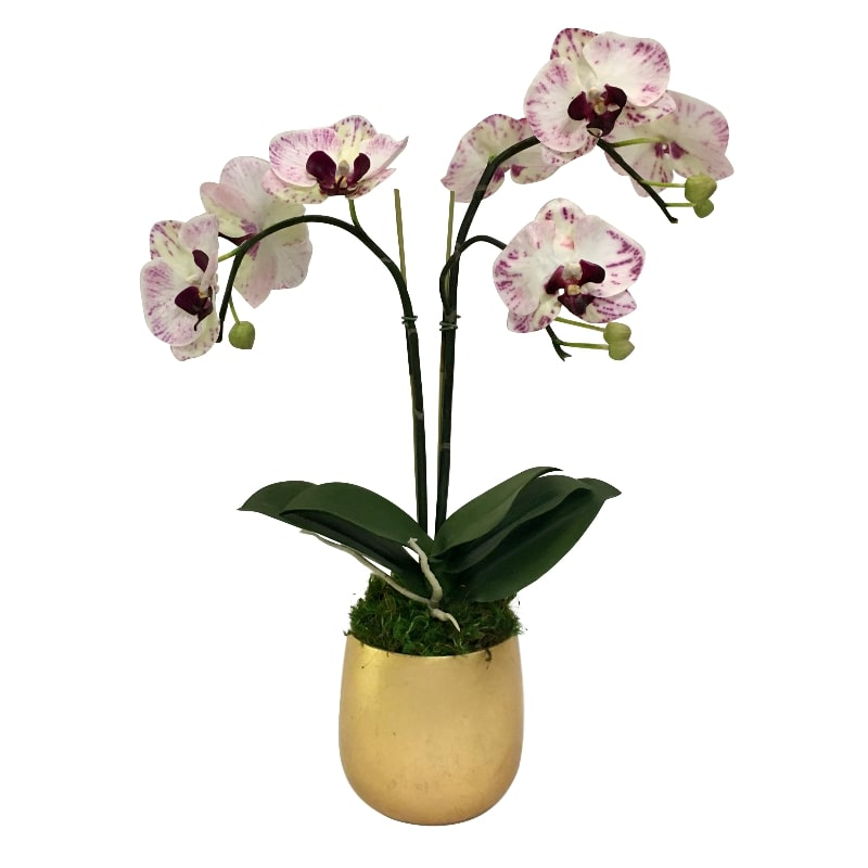 Resin Round Container Small Gold Leaf - Double Orchid Purple & White Artificial