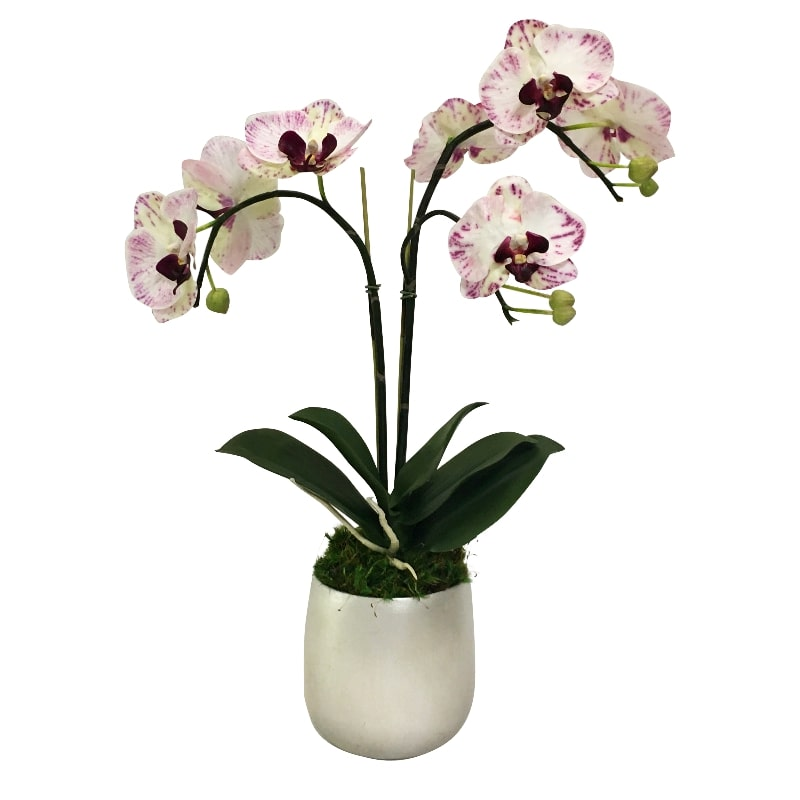Resin Round Container Small Silver Leaf - Double Orchid Purple & White Artificial