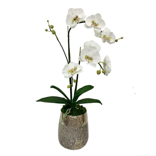Round Glass Vase Hammered Large - White & Green Double Orchid Artificial
