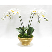 Load image into Gallery viewer, Resin Round Container Gold Leaf - White & Yellow Orchid Artificial - 4 Stems