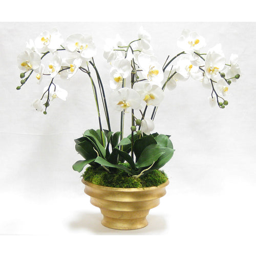 Resin Round Container Gold Leaf - White & Yellow Orchid Artificial - 6 Stems