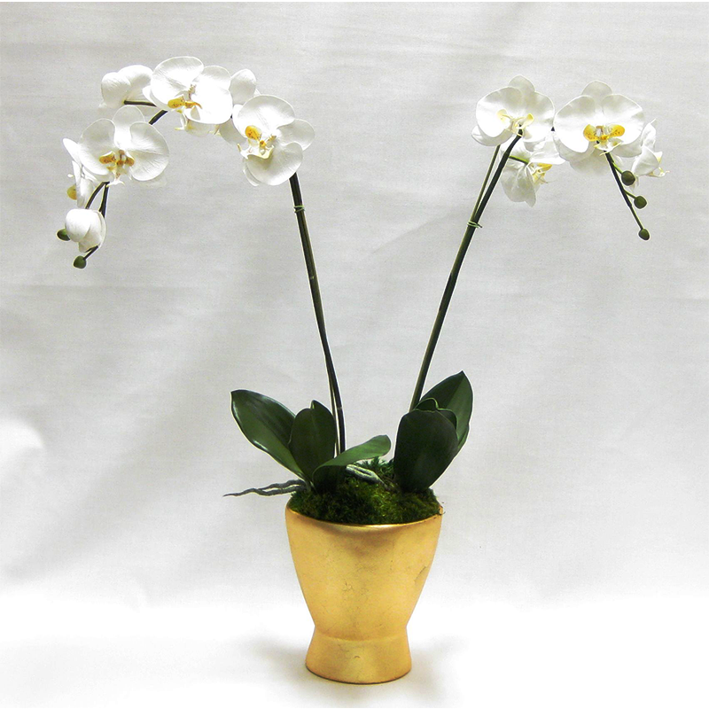 Resin Container Small Gold Leaf - White & Yellow Orchid Artificial
