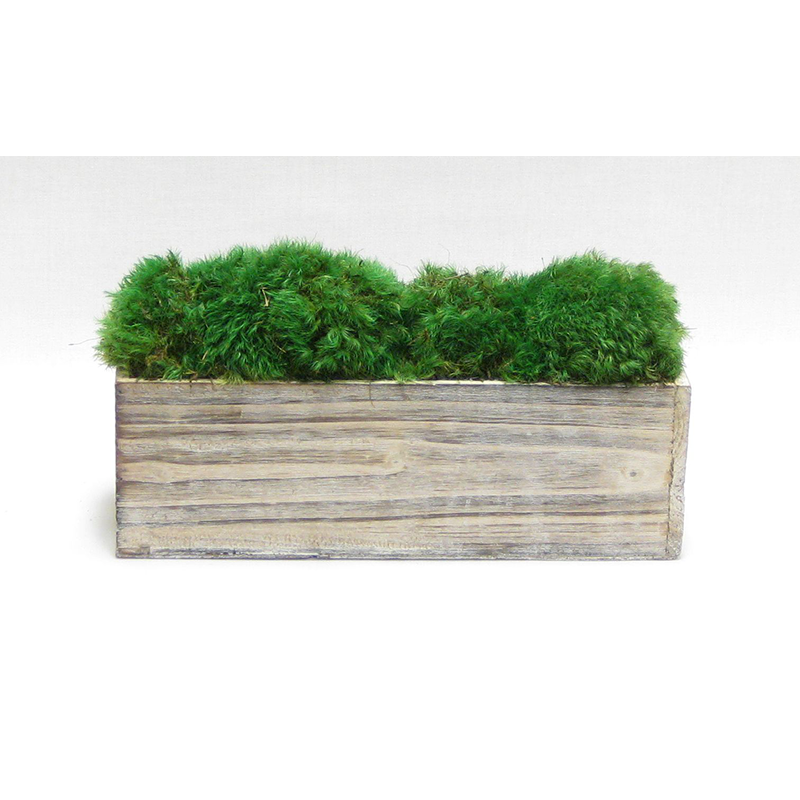 Wooden Rect Short Container White Stain - Preserved Moss