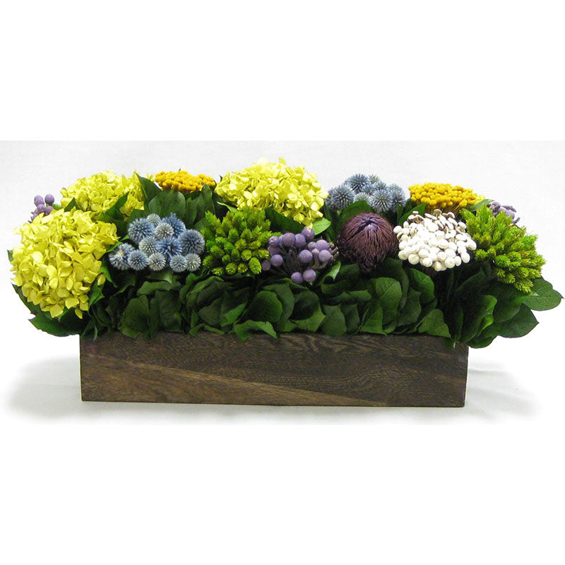 Wooden Long Container Brown Stain - Echinops w/ Banksia, Brunia, Pharalis & Hydrangea Basil..