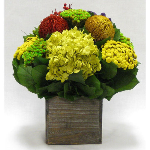 Wooden Cube Container Brown Stain - Multicolor w/ Banksia, Brunia, Pharalis & Hydrangea Basil..