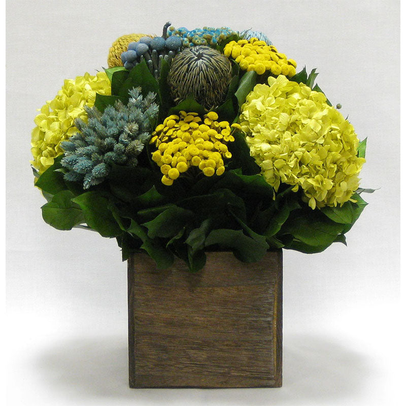 Wooden Cube Container Brown Stain  - Blue/Yellow Multicolor w/ Banksia, Brunia, Pharalis & Hydrangea Basil..