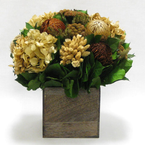 Wooden Cube Container Brown Stain - Brown & Natural Banksia, Brunia, Pharalis & Hydrangea Ivory & Light Brown..