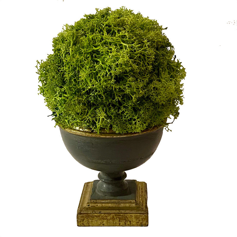 Small Wooden Footed Bowl Dark Blue Grey - Reindeer Moss Topiary Ball Basil