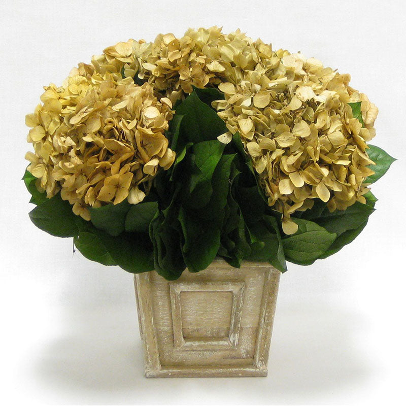 Wooden Weathered Antique Square Mini Container - Hydrangea Ivory