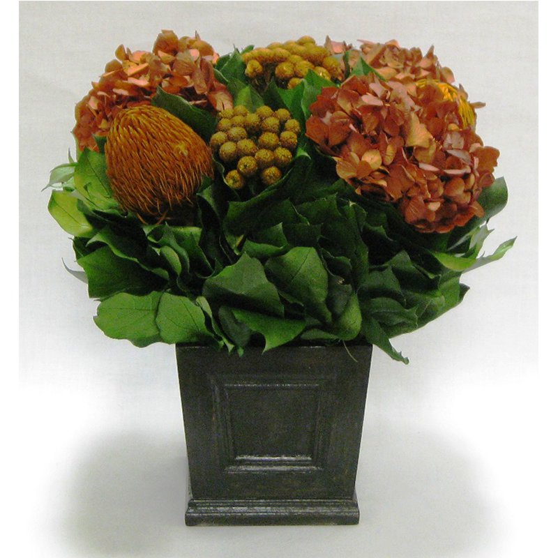 Wooden Mini Square Planter w/Inset Black Antique - Banksia, Brunia and Hydrangea Rust Brown