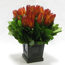 Load image into Gallery viewer, [WMSPI-BA-PE] Wooden Mini Square Planter w/Inset Black Antique - Protea