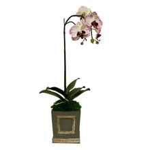 Load image into Gallery viewer, Wooden Mini Square Container Dark Grey & Silver - White & Purple Orchid Artificial