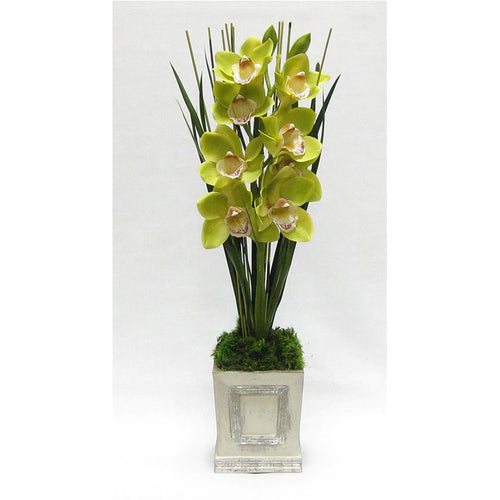 Wooden Small Square Container w/Inset Grey/Silver - Cymbidium Green Orchid Artificial