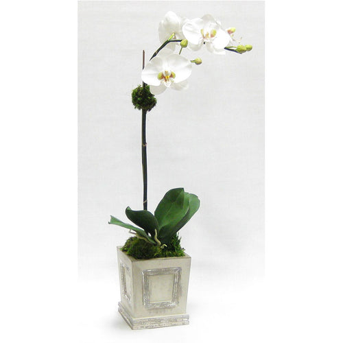 Wooden Small Square Container w/Inset Grey Silver - White & Green Two Spike Orchid Artificial