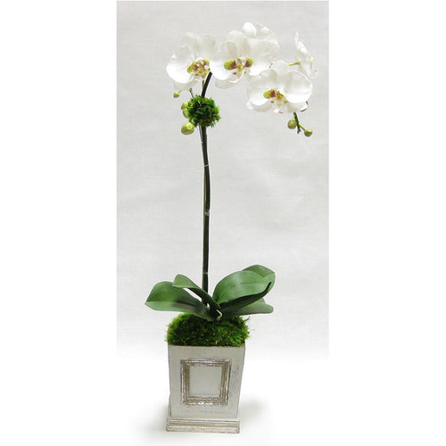 Wooden Small Square Container w/Inset Grey Silver - White & Green Orchid Artificial