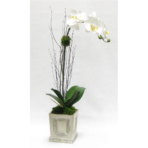 Wooden Small Square Container w/Inset Grey Silver - White & Yellow Orchid Artificial