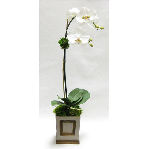 Wooden Small Square Container w/Inset Patina Distressed w/Bronze - White & Green Two Spike Orchid Artificial